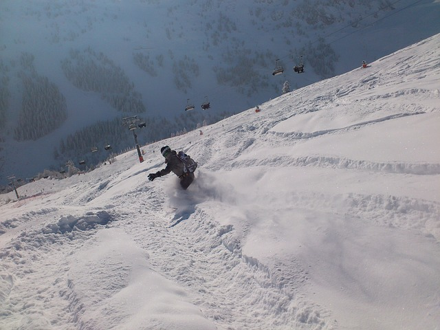 zimní sport