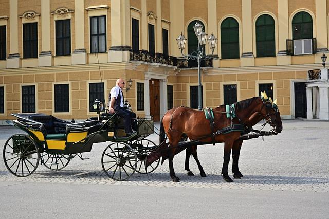 Koč vo Viedni.jpg