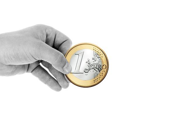 človek drží euro.jpg