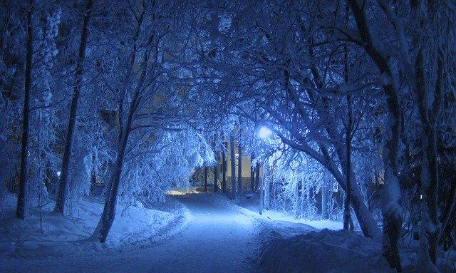 Osvetlená cesta ku domu, obklopená zasneženými stromami.jpg
